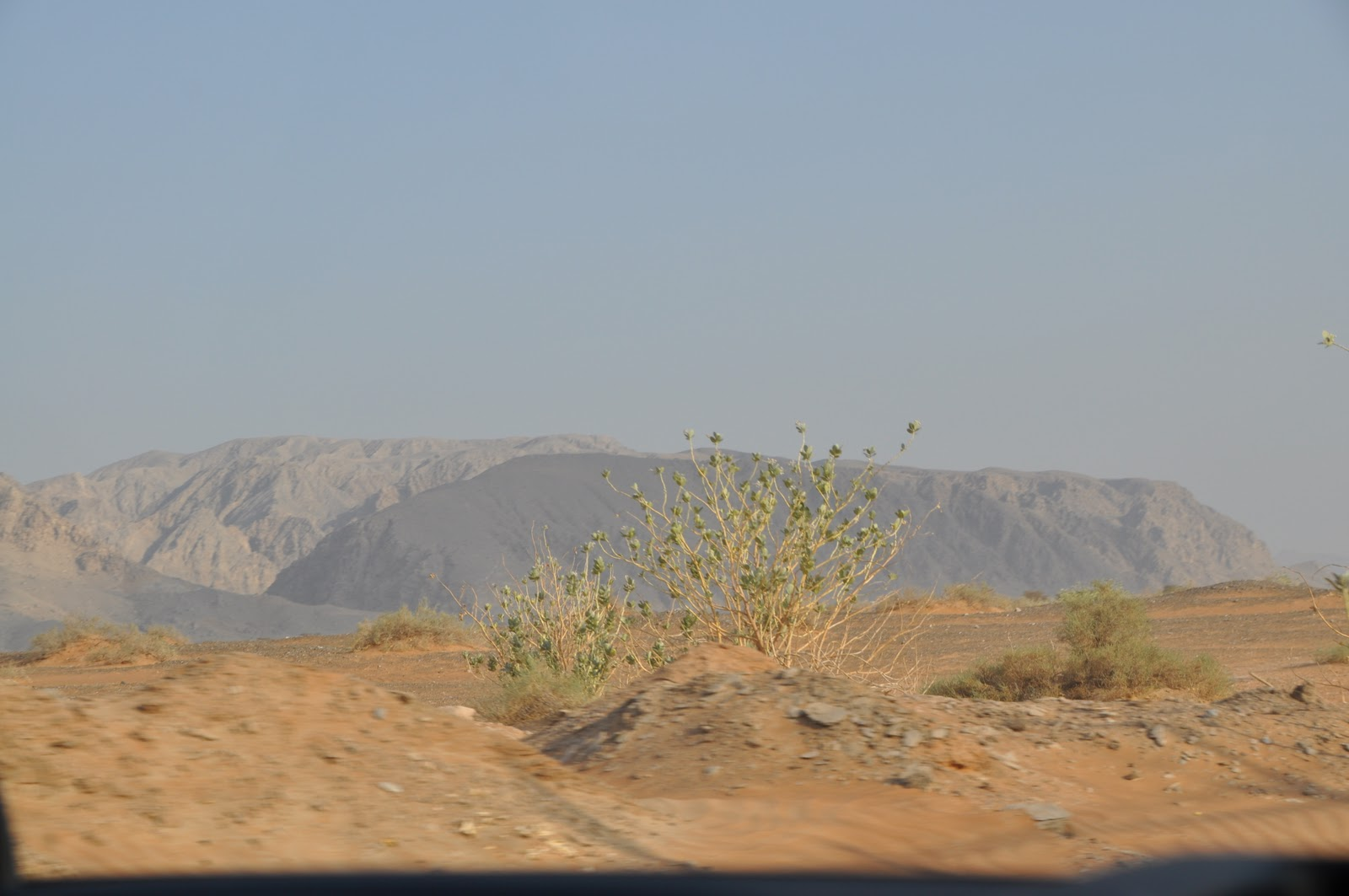 off road in Oman