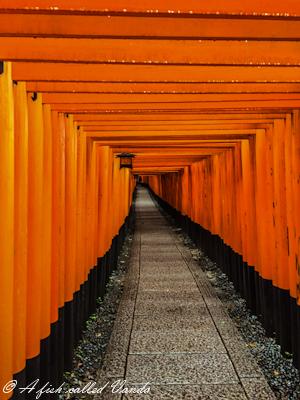 Świątynia Fushimi Inari, Kyoto, Japonia