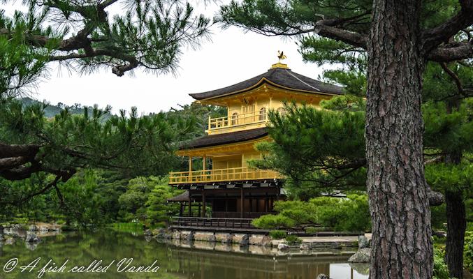 Świątynia Rokuon-ji (Złota Światynia), Kyoto / Japonia
